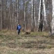 Happy boy runs to camera and waving hands in spring brich grove — Stock Video #26759909
