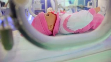 Infant incubator for maintenance of babies in which small doll lies — Stock Video