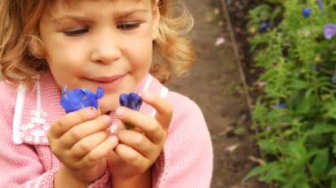 Portrait of girl of blonde which attentively examines violet petals in hands — Stock Video