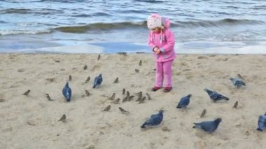 Girl feeds pigeons and sparrows on beach — Stock Video