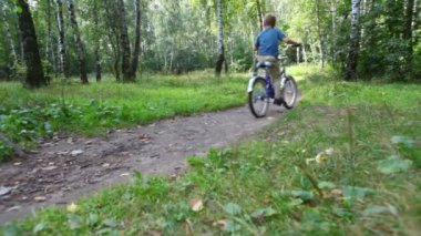 Boy and man rides bicycles on pathway in forest — Stock Video