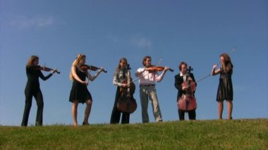 Six musicians on meadow plays stringed instruments — Stock Video