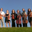 Six musicians with stringed instruments stands on hill — Vidéo