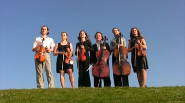 Six musicians with stringed instruments stands on hill — Stock Video