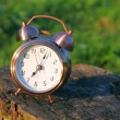 Classical alarm clock lying and ringing in grass — Stock Video