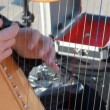 Hands of musician plays harp outdoor — Stock Video