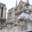 Notre Dame de Paris, view from Siene river — Stock Video