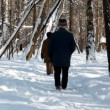 Senior couple go for a walk with a dog in winter forest — Stock Video #27513447