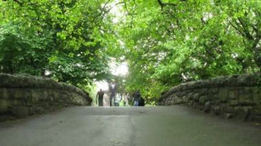 On bridge in Saint Stephens Green Park in Dublin, Ireland. — Stock Video