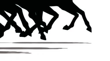 Feet of running horses, close-up. — Stock Video