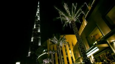 Night Burj Dubai and palm-trees in Dubai, UAE. — Stock Video