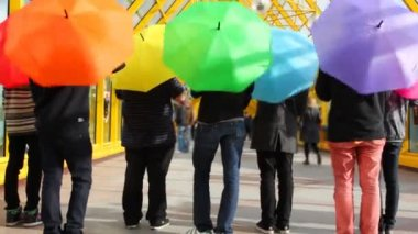 Young men spin colorful umbrellas back to camera then jump up — Stock Video