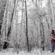 Father and the son walk in snow forest — Stock Video
