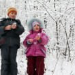 Boy and girl with petards in hands in snow forest — Stock Video #27546185