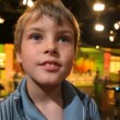Boy standing in big TV studio with spectators — Stock Video