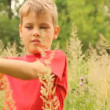 Stock Video: Boy is touching tops of different plants