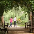 Family playing game in plant tunnel of park — Stock Video