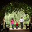 Family walks in plant tunnel with bends  — Stock Video