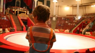 Back view of boy stands against arena in circus after performance — Stock Video