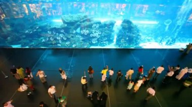 Top view on near aquarium inside Dubai Mall in Dubai, UAE. — 图库视频影像