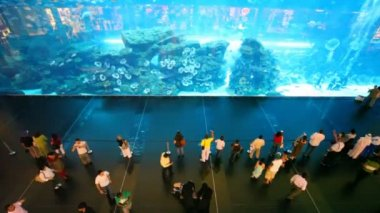 Top view on near aquarium inside Dubai Mall in Dubai, UAE. — Stock Video
