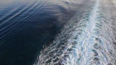Rastreamento de forro cruicruise na superfície da água do mar — Vídeo Stock