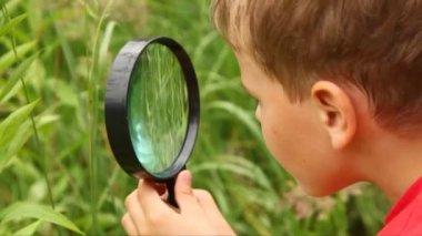 мальчик занят путем изучения природы с объективом — Стоковое видео