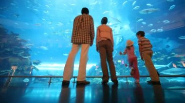 Family is standing at a big aquarium — Stock Video