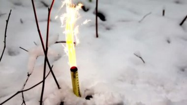 Firework in snow in winter forest — Stock Video