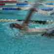 Sportsmen swim backstroke on tracks swimming pool — Stock Video