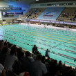 Open championship of russia's swimming in sports complex Olympiysky — Stock Video #27981571