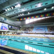 Open championship of russia's swimming — Wideo stockowe
