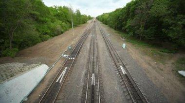 Train enters under bridge in forest — Stock Video