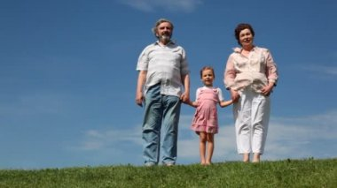 Couple and granddaughter stand holding hands on grass — Stock Video