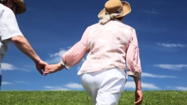 Mature couple holding hands leaves over grass — Stock Video