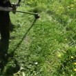 Worker mows grass manual lawnmower — Stock Video
