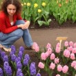 Woman sits looking at beautiful hyacinths — Vídeo de stock
