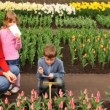 Boy writes information about flowers, near of its mother and sister — Stock Video