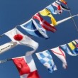 Flags of different countries on mast and ropes flapping in wind — Stock Video #28064195