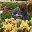 Stock Video: Boy and girl sit on footpath near flowerbeds