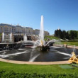 Stock Video: Square with fountain Samson in front of Royal Petrodvorets