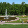 Stock Video: Fountain Bowl at Royal Petrodvorets, Saint Petersburg