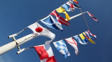 Flags of different countries on mast and ropes flapping in wind — Stock Video
