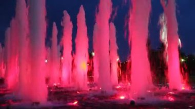 Beautiful illuminated pink fountains — Stock Video