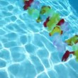 Hawaiian flowers floating in pool water — Stock Video