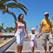 Family goes on walkway lined with palm trees and flowers — Stock Video