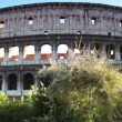 Colosseum or Flavian Amphitheatre in Rome — Stock Video #28811519