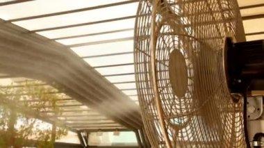 ファンから空気の流れによって植物に水のジェット機 — ストックビデオ