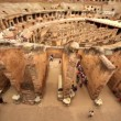 Colosseum arena area and the tunnels under it, walls divide walkway around arena, view from above — Stock Video