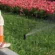 Girl sits on border and touch stream of water pours on flowerbed — Stock Video #28844579